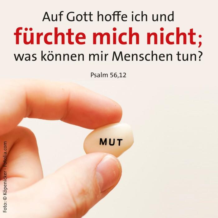 14_Mut_Ps_56_12