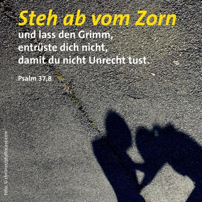 22_Zorn_Ps_37_8
