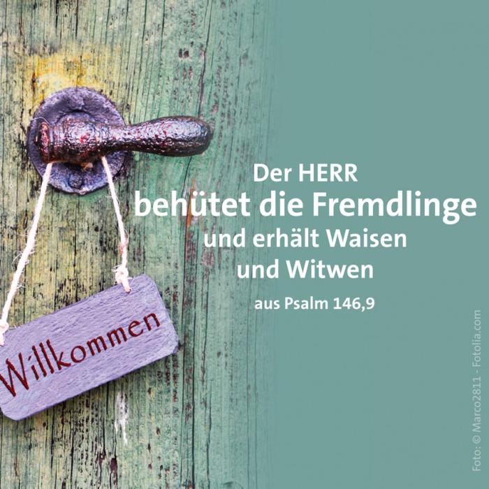 23_Schutz_Psalm_146_9