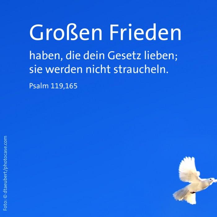 2_Frieden_Ps_119,165