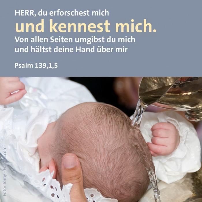 5_Glaube_Ps_139_1_5