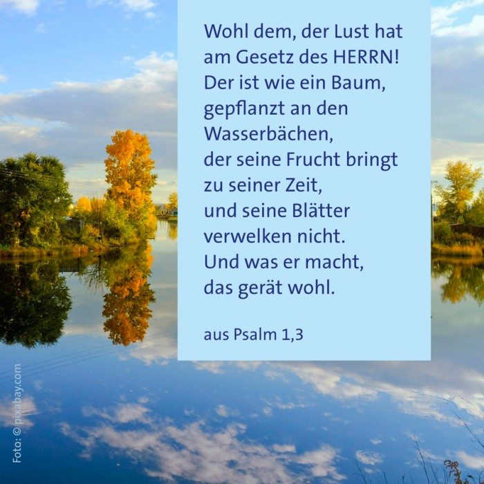 5_Glaube_Psalm_1_3
